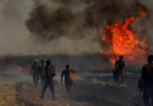 بەری ڕەنجی ساڵێكی بەشێك لە جووتیارانی ڕۆژئاوای كوردستان دەسووتێت